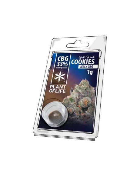 Mango Kush Fleur de CBD